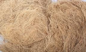 sợi dừa