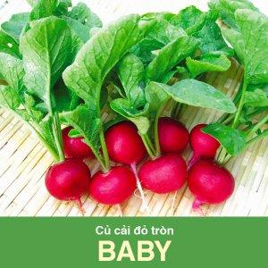 củ cải đỏ tròn baby