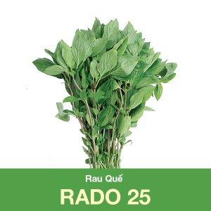 hạt giống rau quế RADO 25