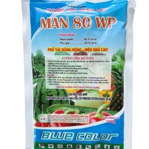MAN 80WP blue color