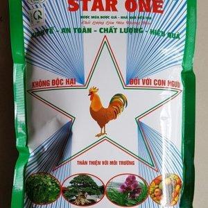 starone 1