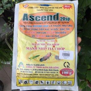 ascend 20sp