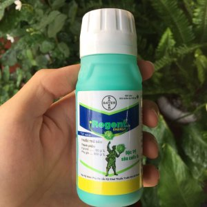 thuốc trừ sâu regent 5sc 1