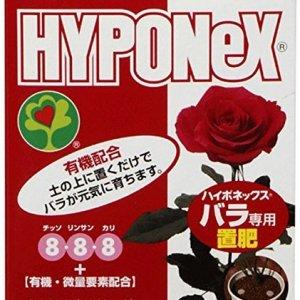 hyponex for rose