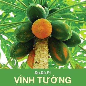 HG du du F1 Vinh Tuong