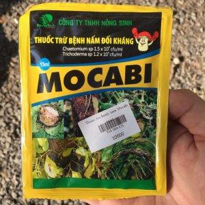 mocabi 1