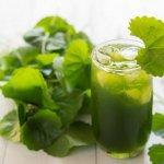Những công dụng tuyệt vời của rau má đối với làm đẹp và tốt cho sức khỏe
