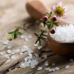 Tác dụng của Magie và lưu huỳnh đối với cây trồng? Lý do muối Epsom Salts là phân bón cần thiết cho cây?
