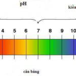 Ảnh hưởng của độ pH đến cây trồng