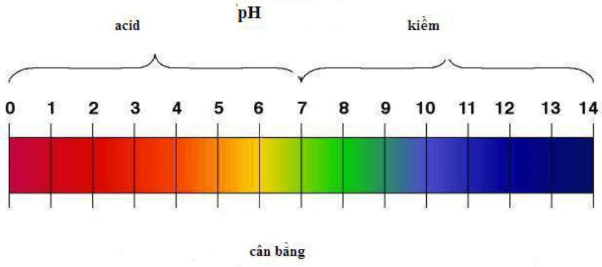 Bảng màu thể hiện độ pH