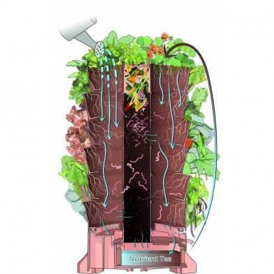 Phân hữu cơ phân hủy bên trong tháp rau