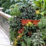 Có nên mua tháp trồng rau hữu cơ? Ưu điểm của tháp trồng rau bạn có biết chưa?