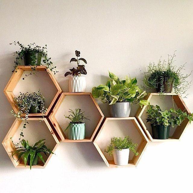 Trang trí với chậu gỗ treo lục giác