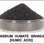Acid Humic là gì? Công dụng của Acid Humic đối với cây trồng