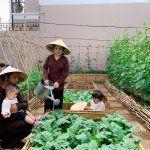 Những loại rau ăn quả dễ trồng tại Sài Gòn