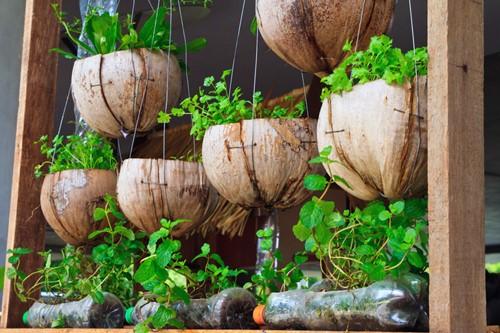 Biến những vật phế thải thành những chậu trồng cây xinh xắn