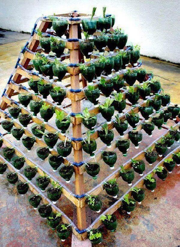 Tháp rau kim tự tháp từ chai nhựa